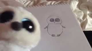 How to Draw a TY Beanie Boo - Drawing Tutorial by Poppy