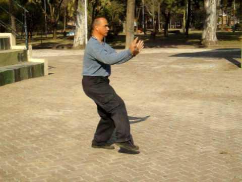 白鹤 -詠春拳(七步三战) - Chinese Sanchin