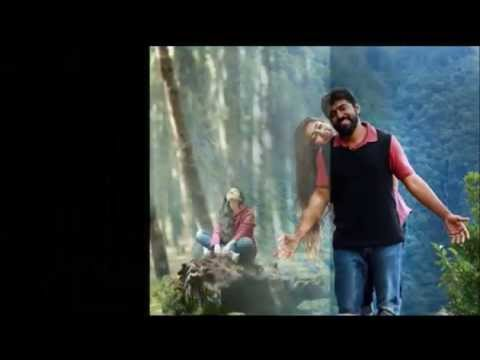 Pathivaayi Njan Premam Remix song