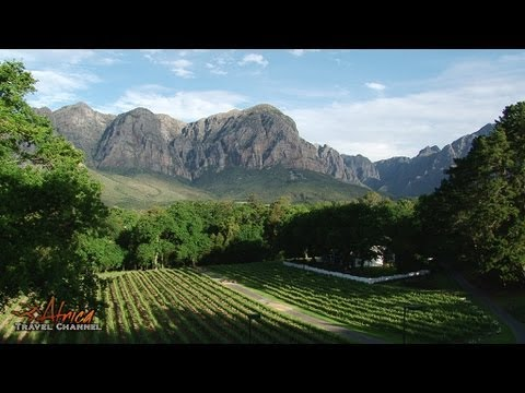 MolenVliet Wine & Guest Estate Stellenbosch South Africa - Africa Travel Cannel