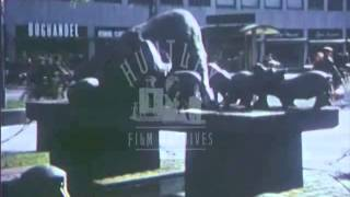 Intensive pig rearing in 1950's Denmark.  Archive film 91697