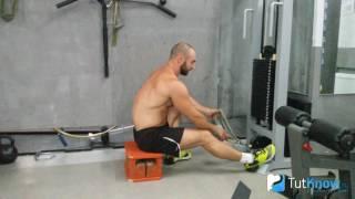 Тяга нижнего блока: правильная техника упражнения