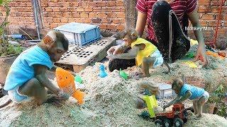 Gambar cover Baby Monkey Mori | Mori, Dodo And Mon Play Toy On Sand | Mori Dodo Much Happy