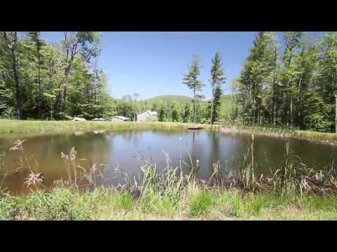 Upstate NY Land 126.88 +/- acres - #34753
