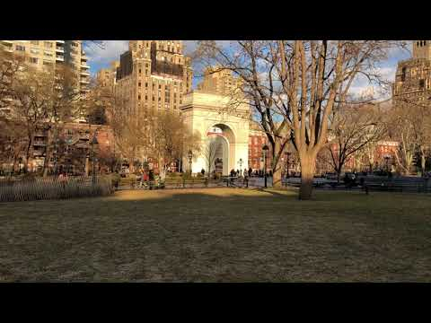Washington Square Park Nyu Area