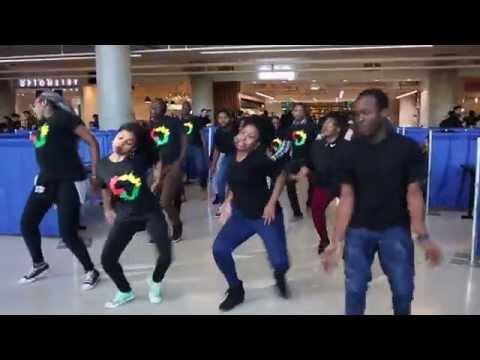 FlashMob (African Awareness Initiative)
