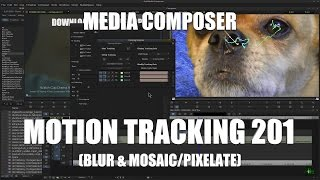 Media Composer - Motion Tracking 201 (Blur & Mosaic/Pixelate)
