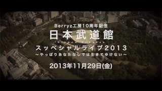 【告知】Berryz工房 2013年11月29日 日本武道館スッペシャルライブ2013