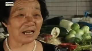 Umwelt vor dem Untergang   China Doku deutsch