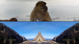 Nick Cave - Rock of Gibraltar (HD)
