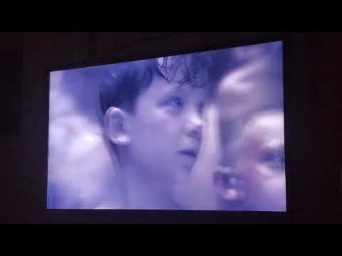 Tragic Movie/the Boy In The Striped Pajamas Gas Chamber Scene