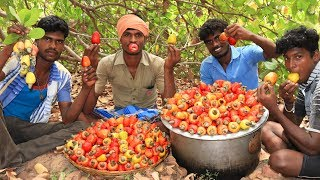 Farm Fresh CASHEW FRUITS Picking and Eating in my Village | village food taste