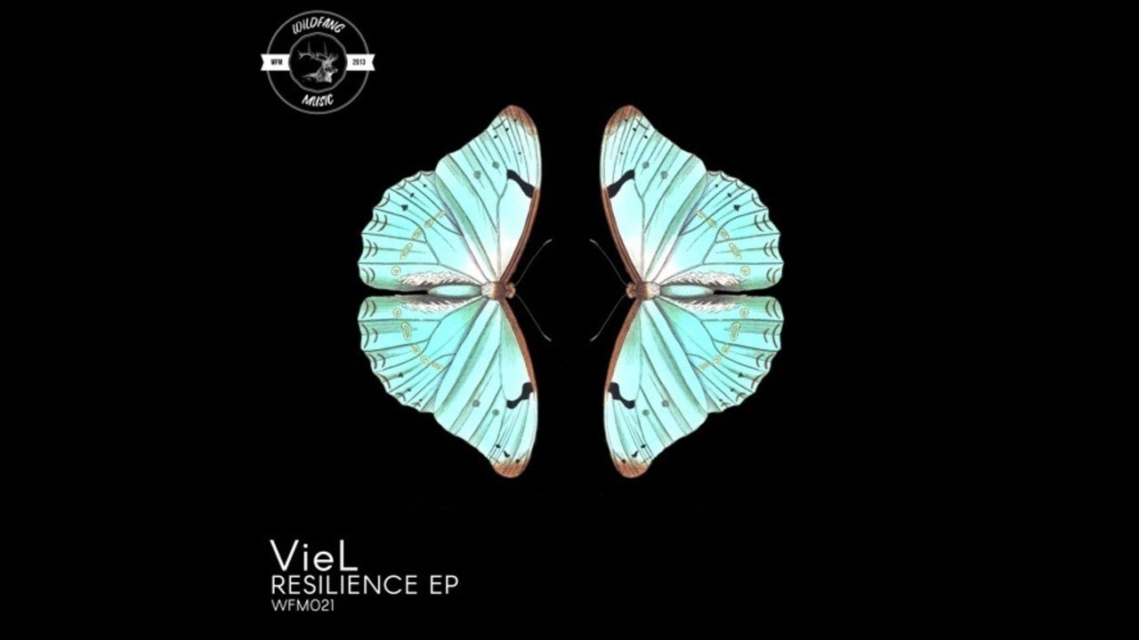 Download VieL - Resilience