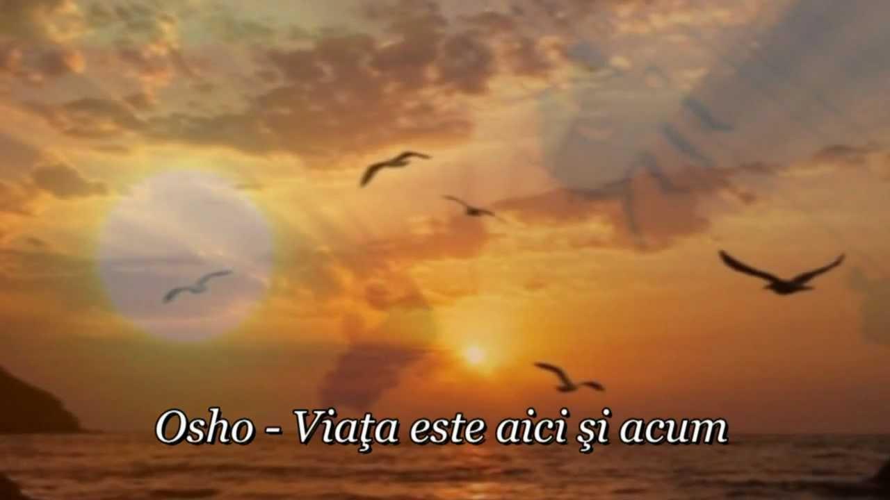 osho citate despre viata Osho   Viaţa este aici şi acum (reflecţii)   YouTube osho citate despre viata