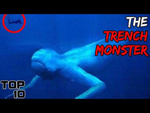 Top 10 Sea Creatures Found In The Marianas Trench