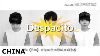 #despacito in 20 de limbi cover