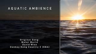[Remaster] Aquatic Ambience — Donkey Kong Country 3 (GBA)