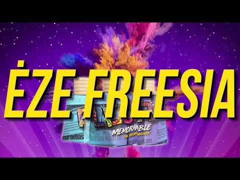 FLERR - EZE FREESIA