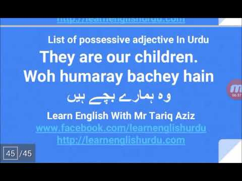 Possessive Adjectives or Possessive determiners - Kids And Parents Series
