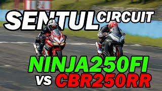 Hampir Nabrak Biawak! - CBR250RR vs Ninja250FI - SENTUL INTERNATIONAL
