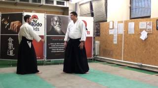 ushiro katate kubijime iriminage [TUTORIAL] Aikido empty hand advanced techniques