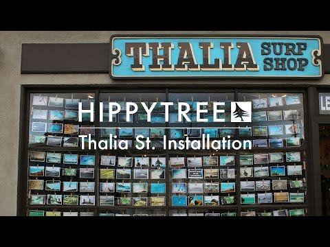 HippyTree / Installation at Thalia St. Surf Shop