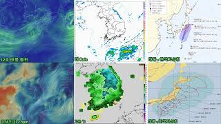 12호 태풍 돌핀, 오늘의 날씨, 실시간, 미세먼지, …