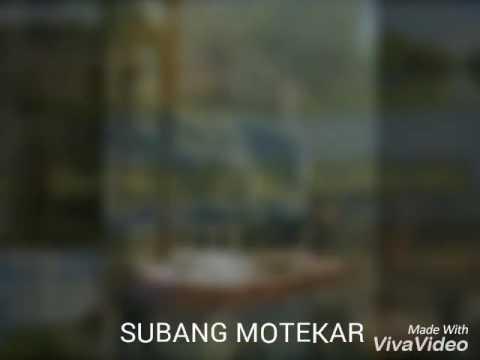 SUBANG MOTEKAR