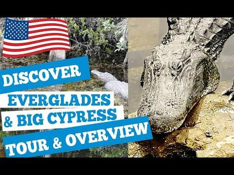 Big Cypress National Preserve Tours 2019 - Discover Everglades