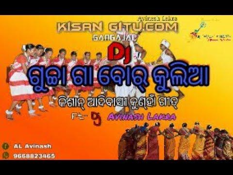 Gucha Ga Baar Kuliya Dj Kisan Kunha Adivasi Dj Dance Mix Song Dj Avinash Lakra (KUTRA)