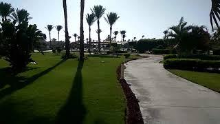 Завтрак в отеле Coral Sea Waterworld 5*, Шарм Эль Шейх, Египет
