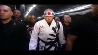 """Georges """"Rush"""" St-Pierre UFC Highlights [2013] NEW!"""