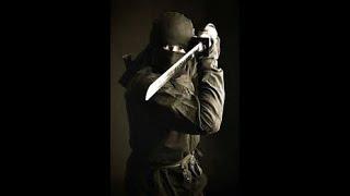 My thoughts on Ninjutsu #ninjutsu #martialarts #ninja