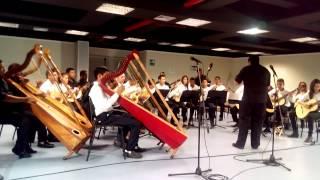 Orquesta Alma Llanera de San fernando de Apure. Juan Luis Mijares Rondon en la Mandolina.