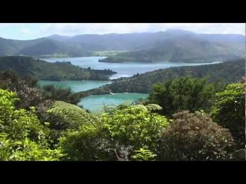 Beachcomber Cruises - Picton - Queen Charlotte Track - Marlborough Sounds