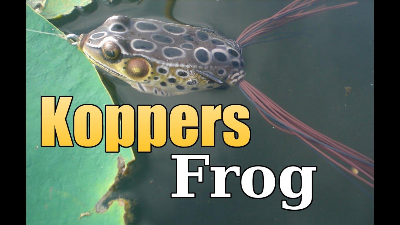 Koppers live target frog