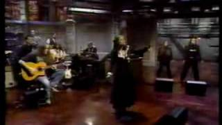 Concrete Blonde - Mexican Moon (live with David Letterman).avi