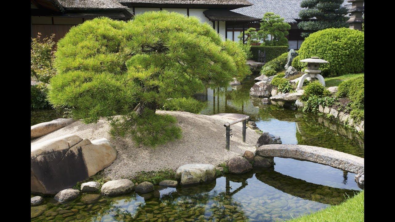 Japanese Garden and Landscape Creative Ideas - Amazing ...