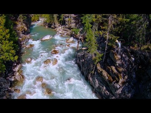 Fly Fishing for Cutthroat Trout by Todd Moen