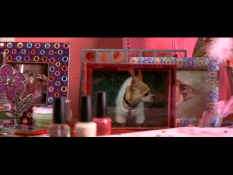 Legally Blonde [2001] | Credits/Title Sequence