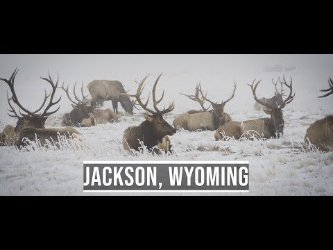 Weekend in Jackson, Wyoming in Winter