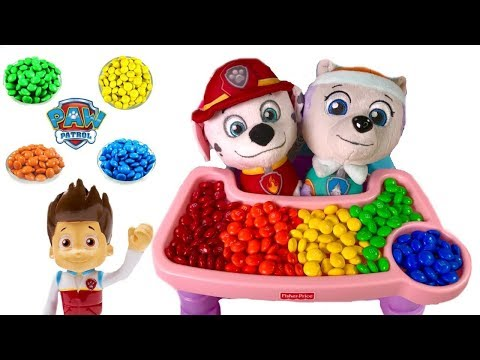 Fizzy Learning Video Paw Patrol Marshall & Everest Brush Their Teeth |