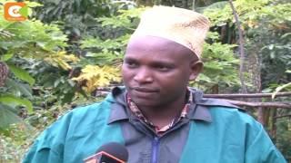Smart Farm: Karanja ventured into tree farming 2012