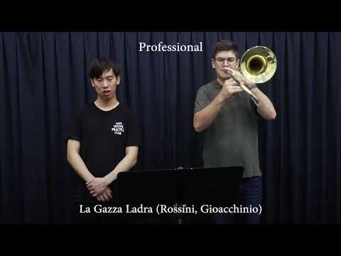 Professional vs Beginner Trombonist