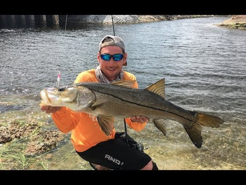 BIG SNOOK IN FRESHWATER FLORIDA CANALS!!