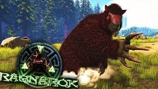 NIEUW SOORT DINO & 2 REXEN TEMMEN! - ARK: Ragnarok #8