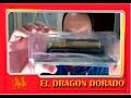 COLECCION DE TRENES LOCOMOTORAS ESTATICAS EDICIONES DEL PRADO - trenes de juguete infantiles