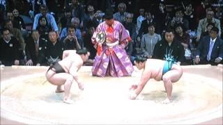 平成28年大相撲九州場所 11月16日 満員御礼 Sumo -Kyushu Basho.