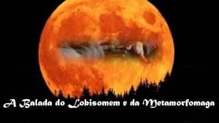 Melissa Hogwarts - A Balada do Lobisomem e da Metamorfomaga (Lupin/Tonks)