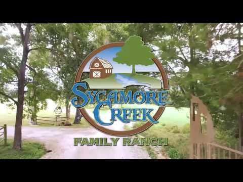 Sycamore Creek Commercial